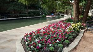 Riverwalk Flowers